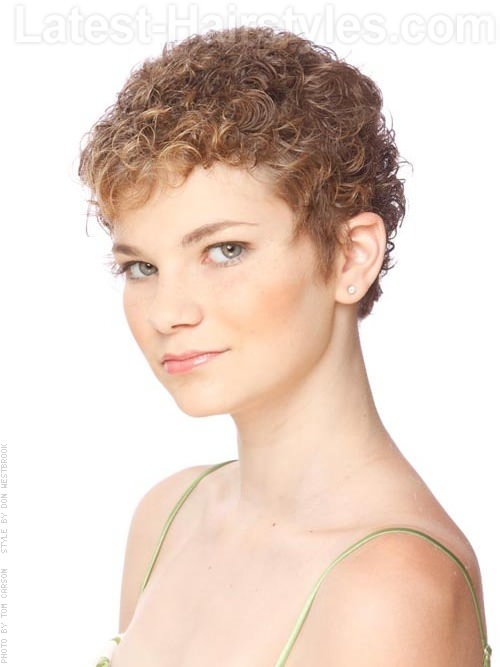 Curly Pixie Hairstyles Hairstyle Archives - Styling curly pixie